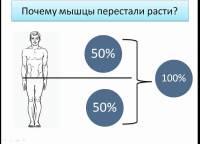 не растет мышечная масса