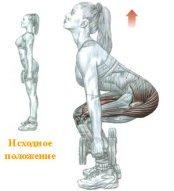 упражнения для набора массы для девушек - приседание с гантелями