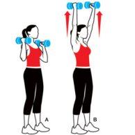 выжимание гантелей от плеча