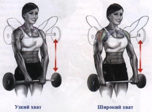 упражнения для набора массы для девушек - протяжка со штангой