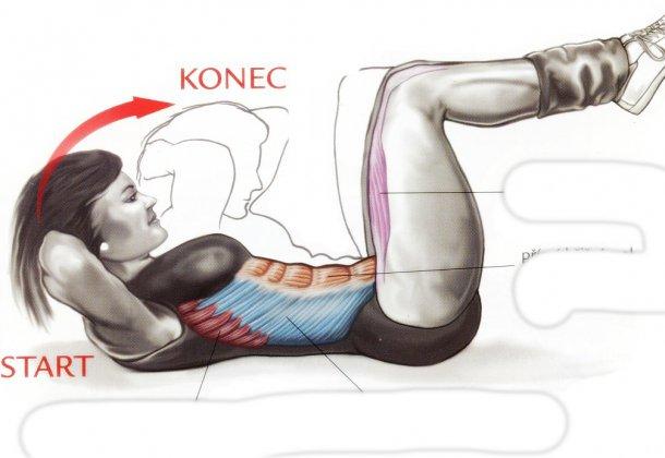 упражнения для набора мышечной массы для девушек - скручивание лежа на полу