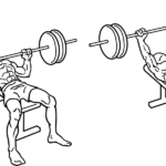 Жим штанги на наклонной скамье — проработка грудных мышц