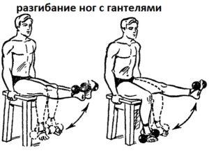 эффективный набор массы разгибание ног