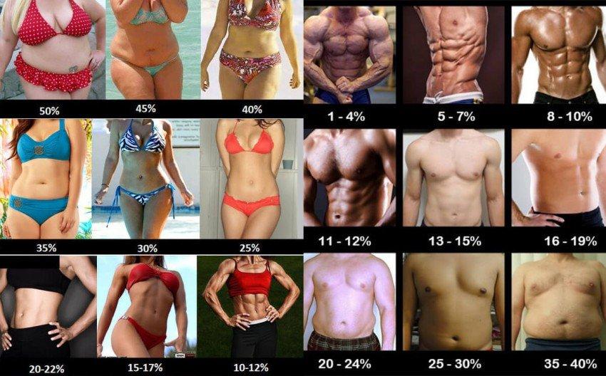 сколько набрать массы без стероидов