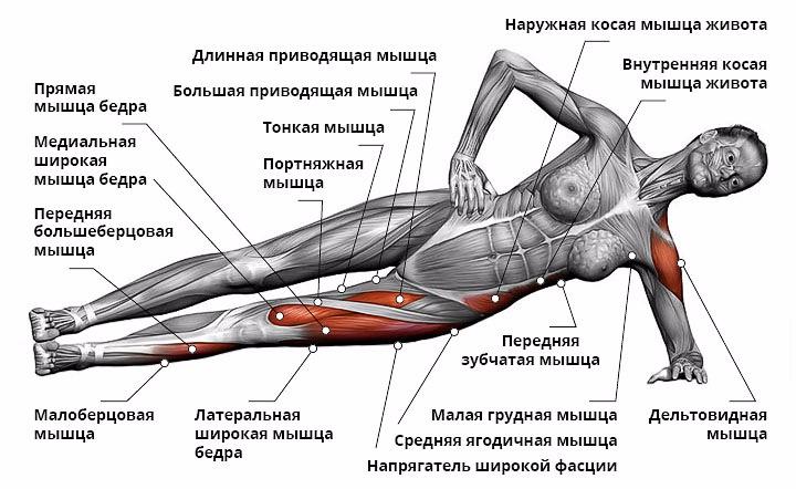 укрепления спины - боковая планка