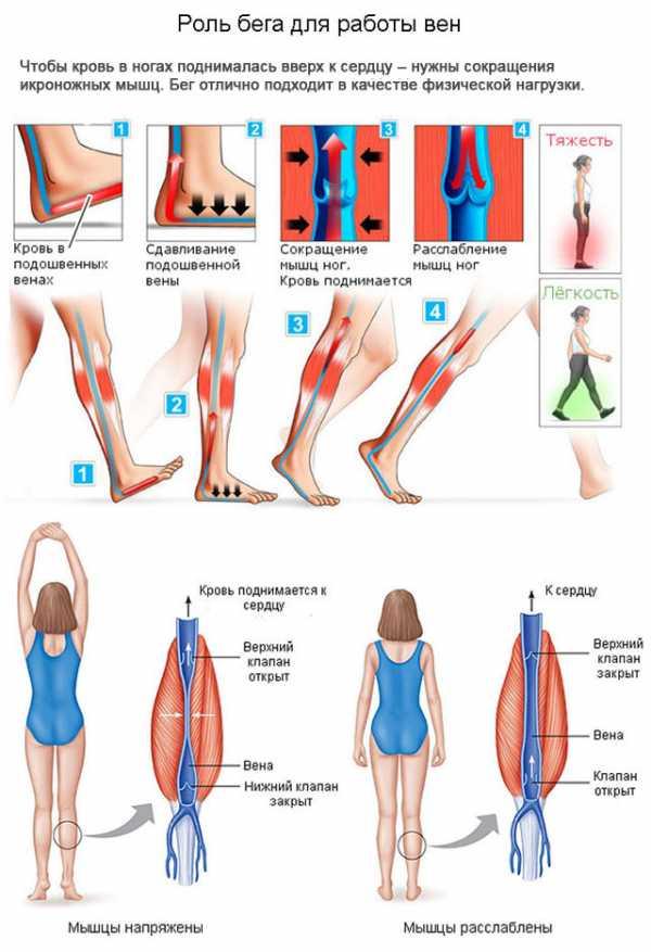 упражнения на ноги разрешенные