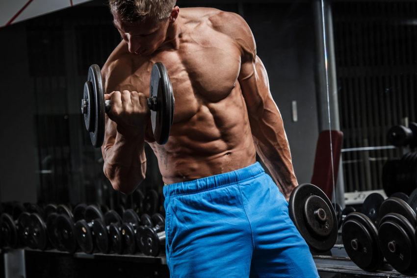 как часто менять программу тренировок для набора мышечной массы