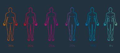 Калькулятор процента жира в организме (онлайн)