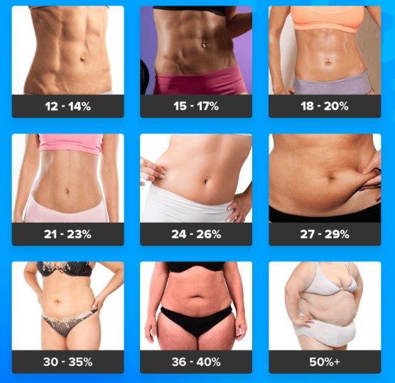 жировые отложения женщин