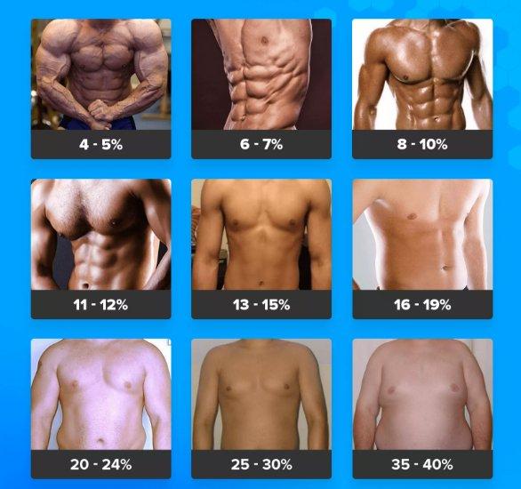 жировые отложения мужчинжировые отложения мужчин