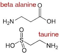 для чего принимать аминокислоту