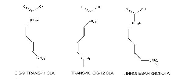 сопряженная связь конъюгированной линолевой с=сс=с