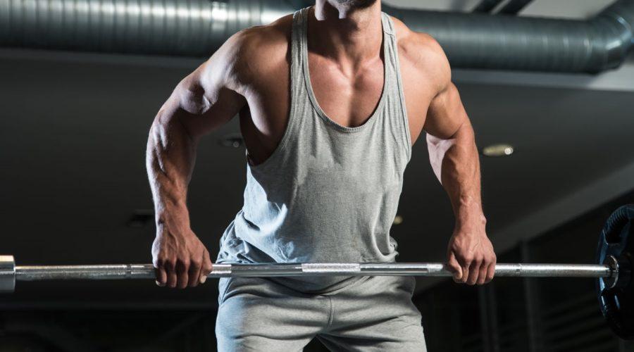 Тяга штанги к поясу в наклоне - тренировка мышц спины