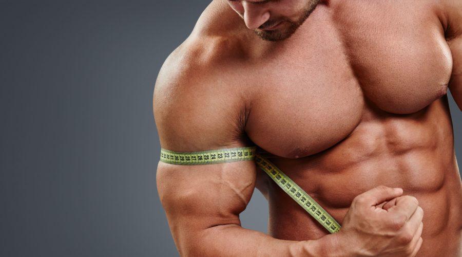 Сколько делать разминочных подходов перед каждым упражнением
