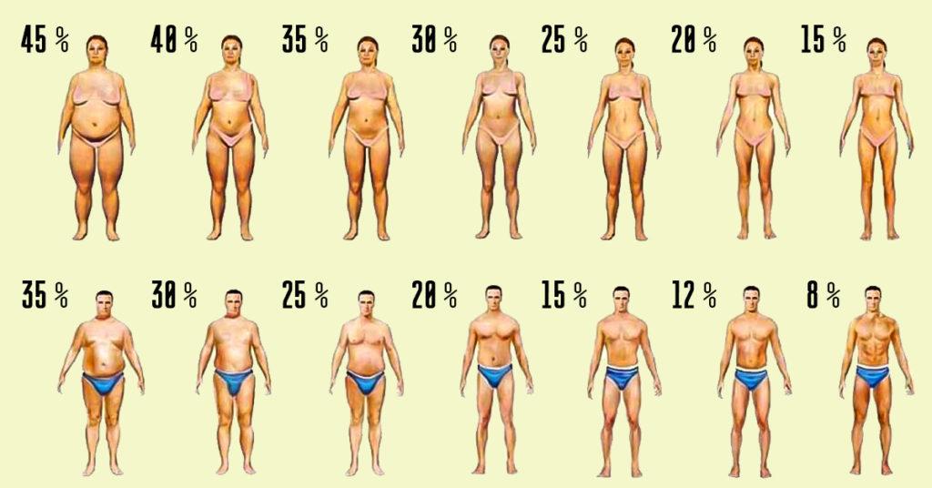 похудеть или набрать массу - проценты