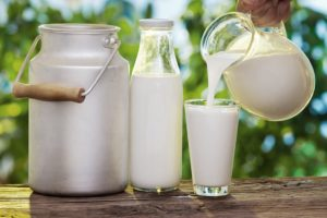 дешевые источники - молоко
