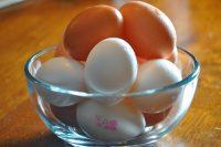 Сколько калорий в яйце пищевая ценность и полезные свойства