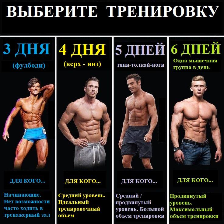 набор мышечной массы тренировки для тренажерного зала