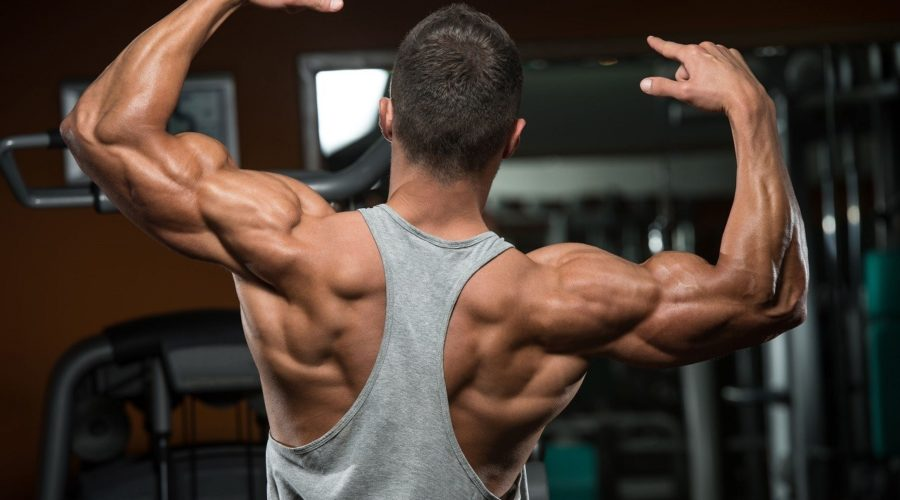 Как накачать плечи - программа тренировок на 30 дней