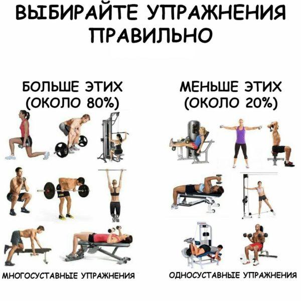на какие упражнения делать основной акцент при наборе мышечной массы