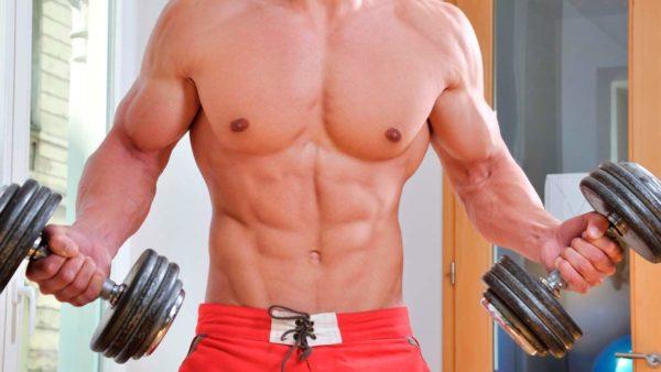 тренировки и питание - мышечный потенциал