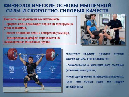 почему необходима периодизация тренировок в спорте