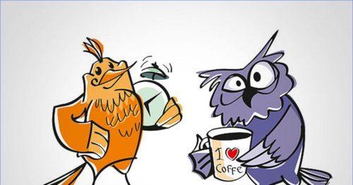 совы и жаворонки кто быстрее наберет лишний вес