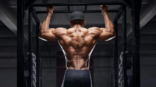 тренировка спины - накачанный вид