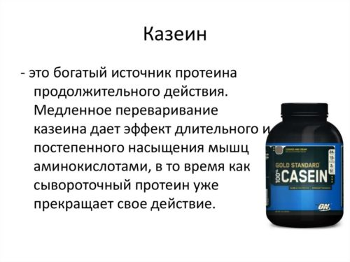 казеин и черника помогают усвоиться цианидин-3-глюкозиду