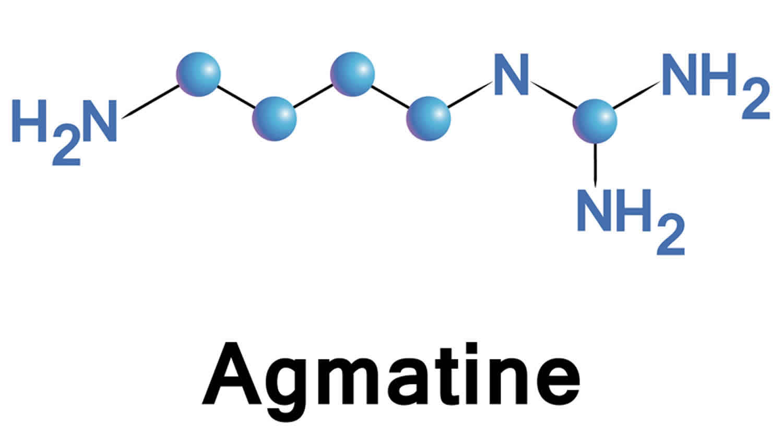агматин